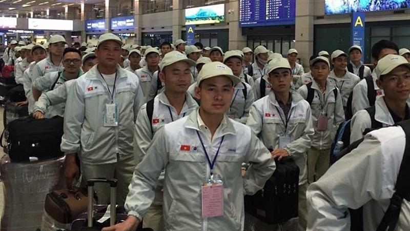 11.699 lao động Việt Nam đi làm việc ở nước ngoài trong tháng 8 năm 2019